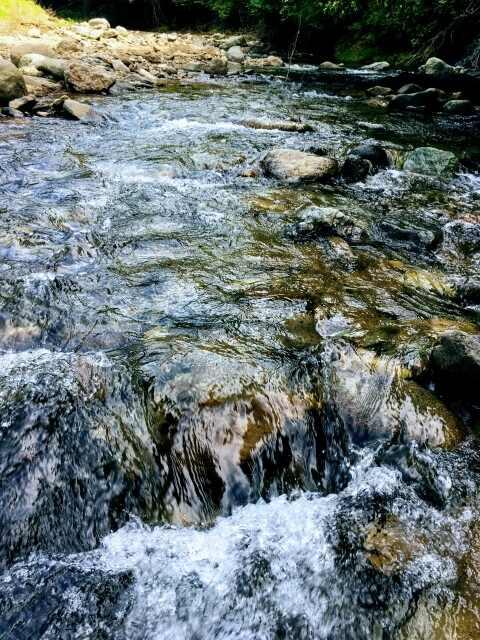 渓流での釣り