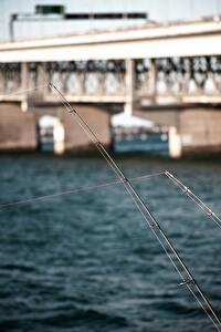 キビレの釣り場