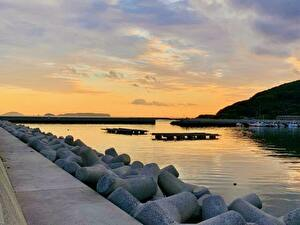 漁港、夜、ポイント